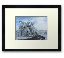 Bearing Weight Framed Print
