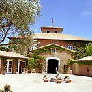 Viansa Winery & Italian Marketplace by John Schneider