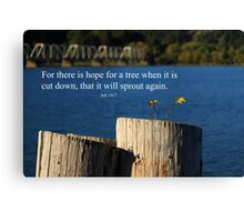 Hope For A Tree Canvas Print