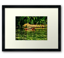 Summer Days Are Gone To Soon Framed Print