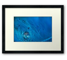 Blue Pigment on Water Droplet and Feather Framed Print
