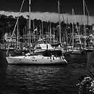 Smooth Sailing  by Sandra Guzman