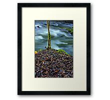 """On its Own"" Framed Print"