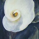 Calla lily by Ellen Keagy