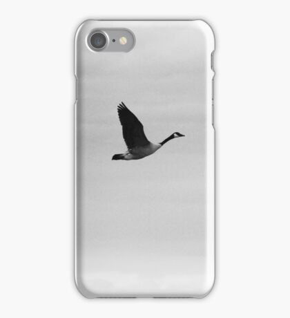 Flying bird iPhone Case/Skin