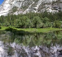 Half Dome At Mirror Lake by Alex Preiss