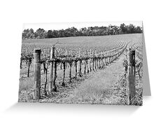 The Winter Vineyard Greeting Card