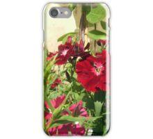 Sweet Williams iPhone Case/Skin