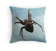 Orb Spider - Topside Throw Pillow