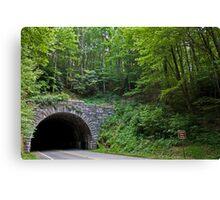 Blue Ridge Parkway Tunnel Canvas Print