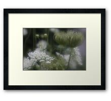 Lace at Evening Time Framed Print