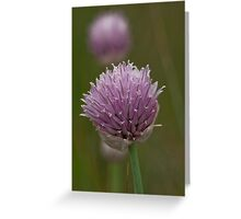 The Garden Chive's WIld Relative Greeting Card