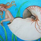 'Nautilus' by Thea T