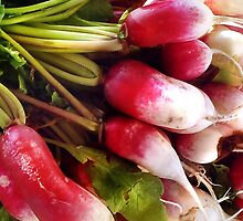 Radishes by Nadya Johnson