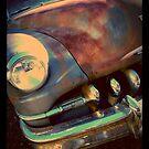 Beauty In The Decay by Lorren Hix