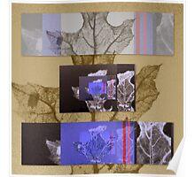 Dry leaf nostalgia Poster