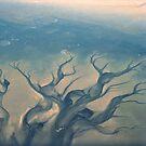 Kuiseb Delta by Euphemia