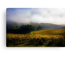 Vineyard Adelaide Hills in Autumn Canvas Print