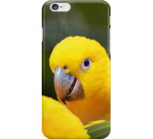 Three yellow birds iPhone Case/Skin