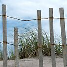 Dunes by Mary Tomaselli