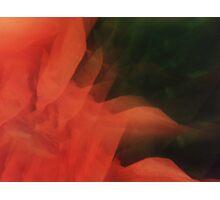 Tissue Flare Photographic Print