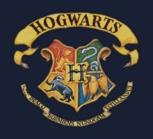 Harry Potter Hogwarts Banner Kids Clothes