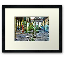 Indoor Garden Framed Print