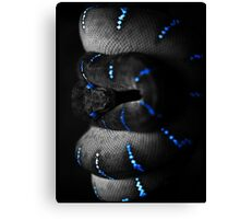 The Black Snake (alpha bkground for dark tshirts) Canvas Print