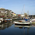 Mevagissey Harbour by derekwallace