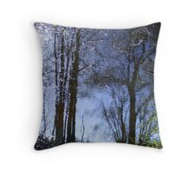The wonderful world of reflections Throw Pillow