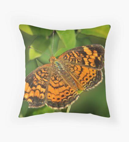Tiny Orange Futterby Throw Pillow
