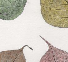 Four fallen leaves Sticker