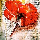 The Poppy Journals...Words in Music by ©Janis Zroback