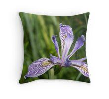 Western Blue Flag Throw Pillow