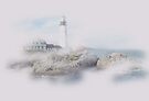 Braving the Fog by John Carpenter