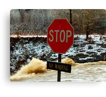 Bad Day To Wade Canvas Print