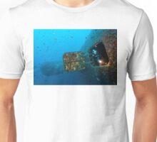 Zenobia - Background Story Unisex T-Shirt