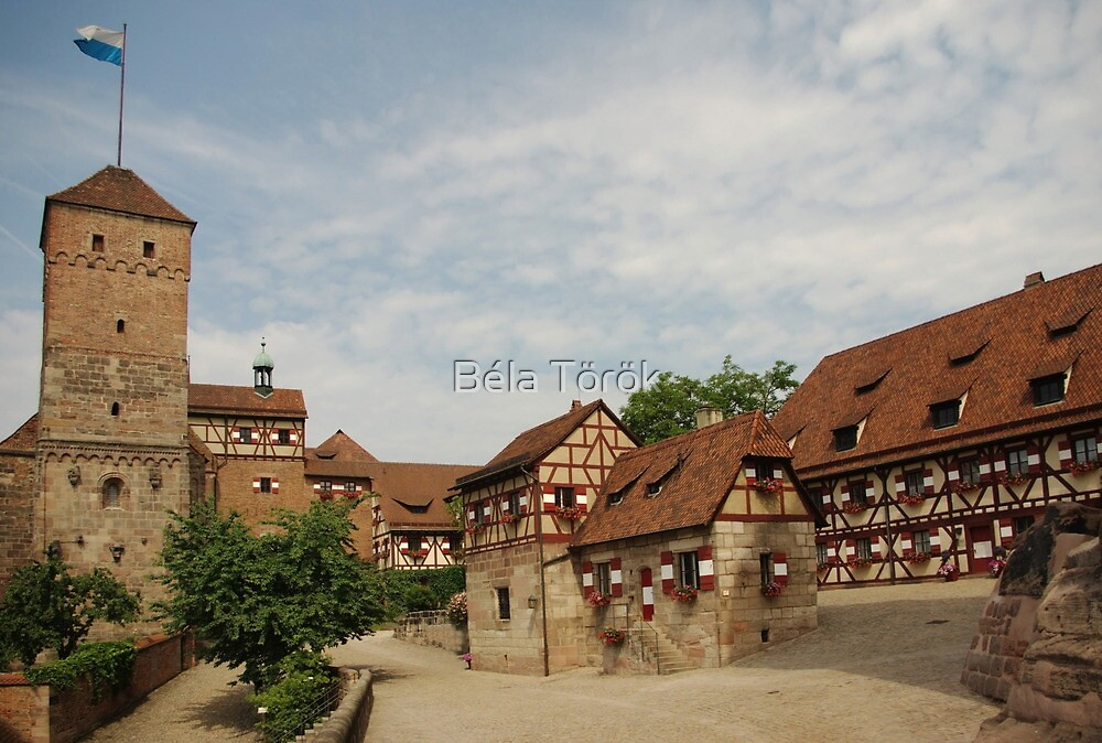 Nuremberg Castle by Béla Török
