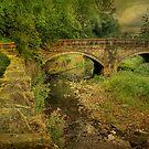Around Lancashire and Yorkshire . by Irene  Burdell