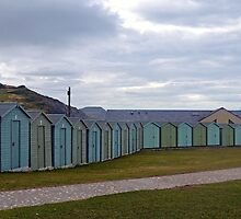 All in a row -Charmouth Dorset UK by lynn carter