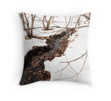 Winter Landscape in the Yashima Highlands Throw Pillow