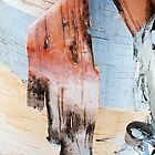 paper birch by Skye Hohmann