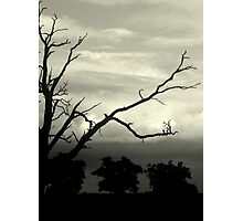 Wizzen 2 - Grantham Photographic Print