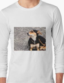 Lonely Puppy Long Sleeve T-Shirt