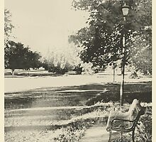 A Look Back by bicyclegirl