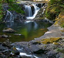 Sweet Creek by Randall Ingalls