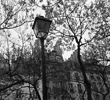 The Lamp on the street. Paris by Svitlana Synel'nyk