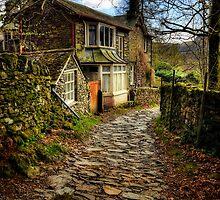 Cumbrian Scenes 2011 by David Lewins