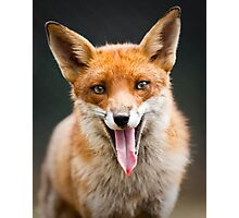 The Laughing Fox Photographic Print