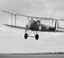 Sopwith Sortie by imageworld